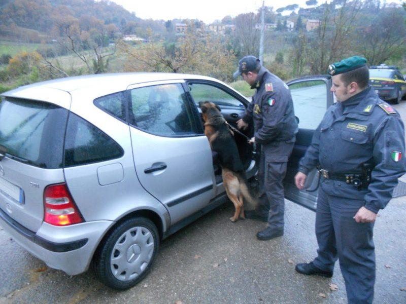 Photo of Controlli antidroga della finanza a Perugia, Foligno e Città di Castello: tre arresti e 4 denunce
