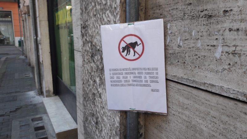 "Photo of Terni, ""Fido"" sporca ma non è colpa sua: cartelli di protesta. Chiesti controlli e multe"
