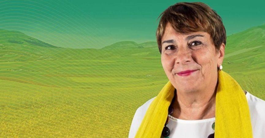 Photo of Elezioni suppletive al Senato: il Pd dà il via libera a Maria Elisabetta Mascio