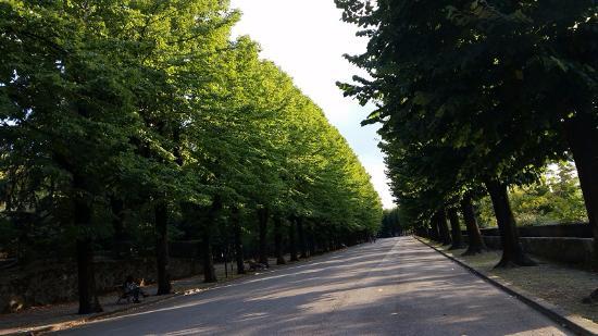 Photo of Covid, a Terni cambiano gli orari di apertura dei parchi cittadini
