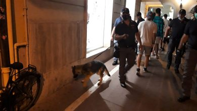 Photo of Terni, quattro dosi di stupefacente fiutate dal cane poliziotto sotto le scale di una scuola