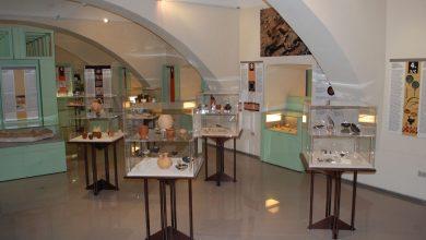 Photo of Museo civico d'Amelia, boom di presenze: a luglio +65 per cento